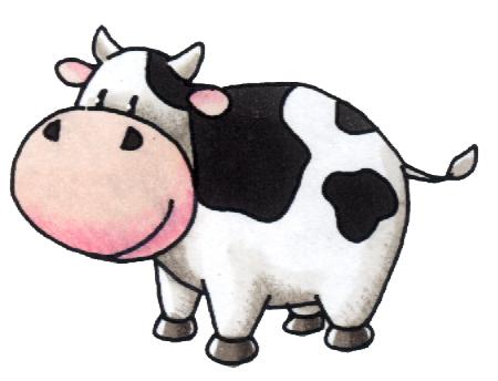 sapi potong