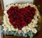 Mawar Merah Putih